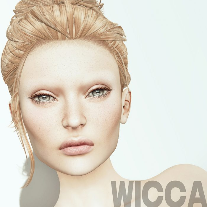 modeling resume wicca merlin