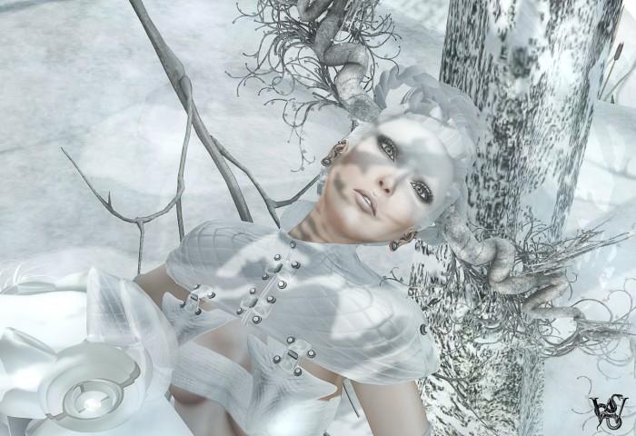 Snow Art 2a