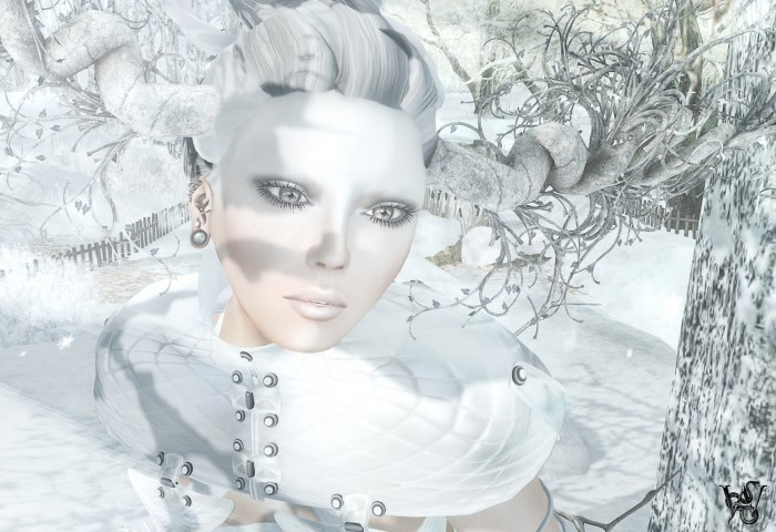 Snow Art 4a